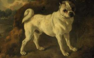 Thomas Gainsborough R.A., A Pug, oil on canvas